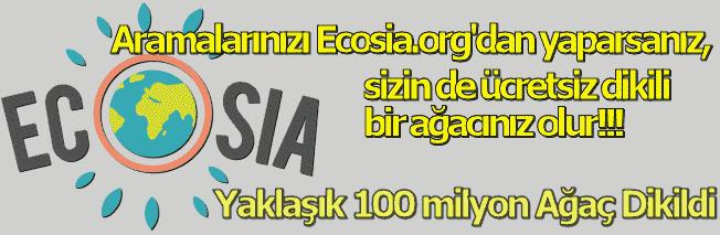 Arama Yapıldıkça Ağaç Dikilmesini Sağlayan Ecosia Arama Motoru